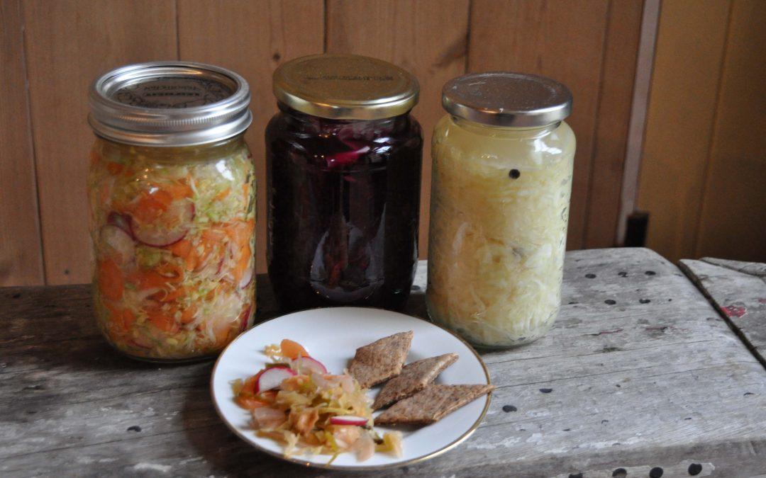 Suffolk Kimchi