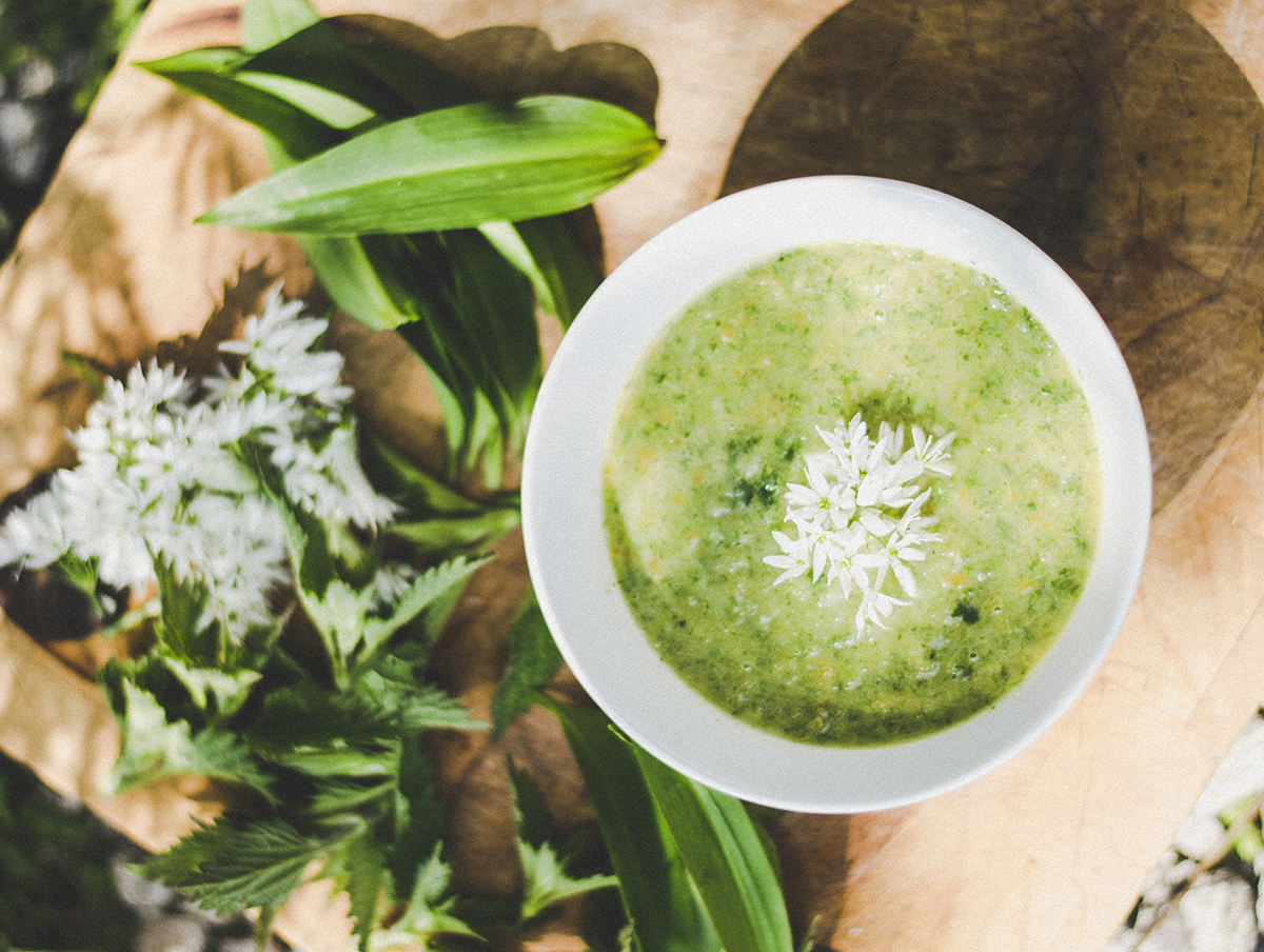nettle soupH