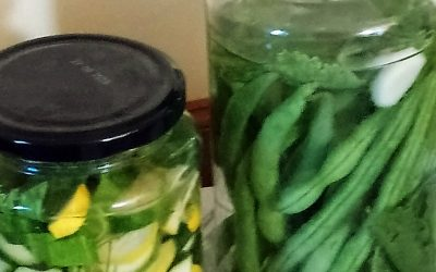 Courgette Pickles and Green Bean Pickles
