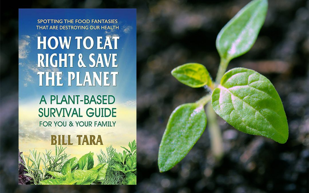How to Eat Right & Save the Planet